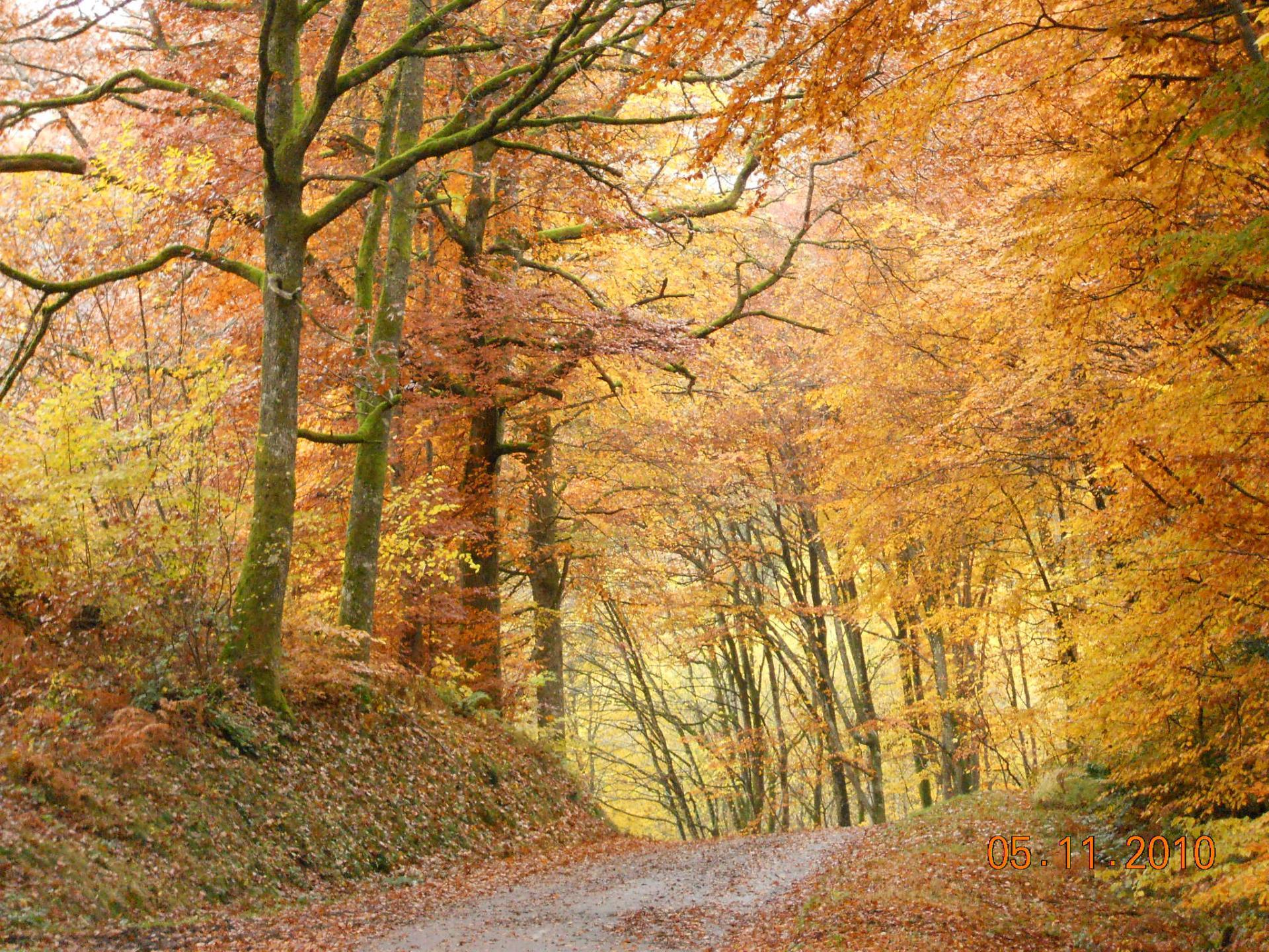 Paysages du morvan - Sous bassement en bois ...